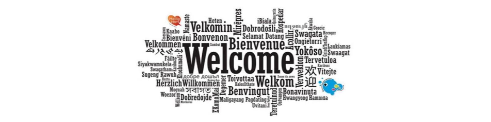 Open Vensters: welkom op onze digitale opendeurdag